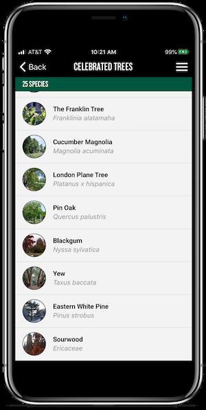 app tree list