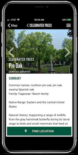app tree info screen